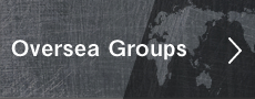 Oversea Groups