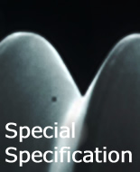 Special Specification
